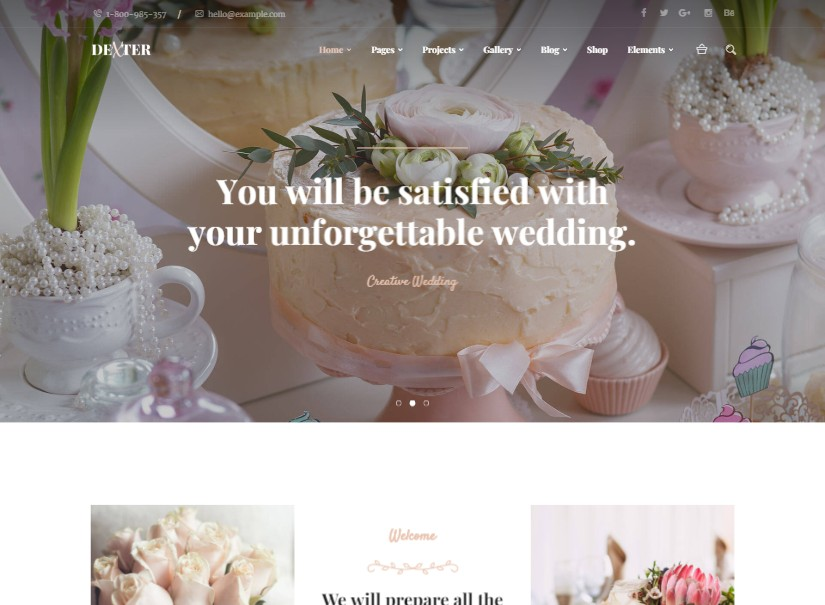 Dexter - best wedding website templates