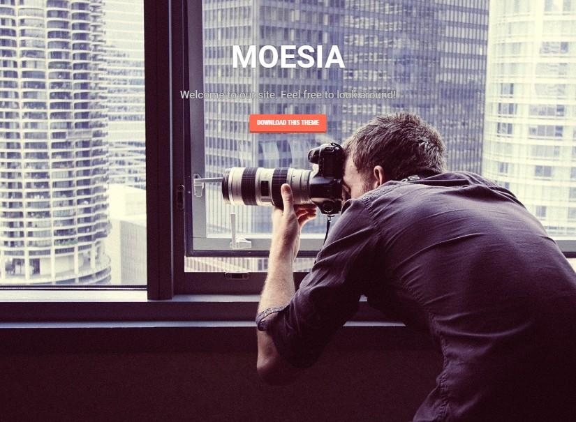 MOESIA - free wordpress themes