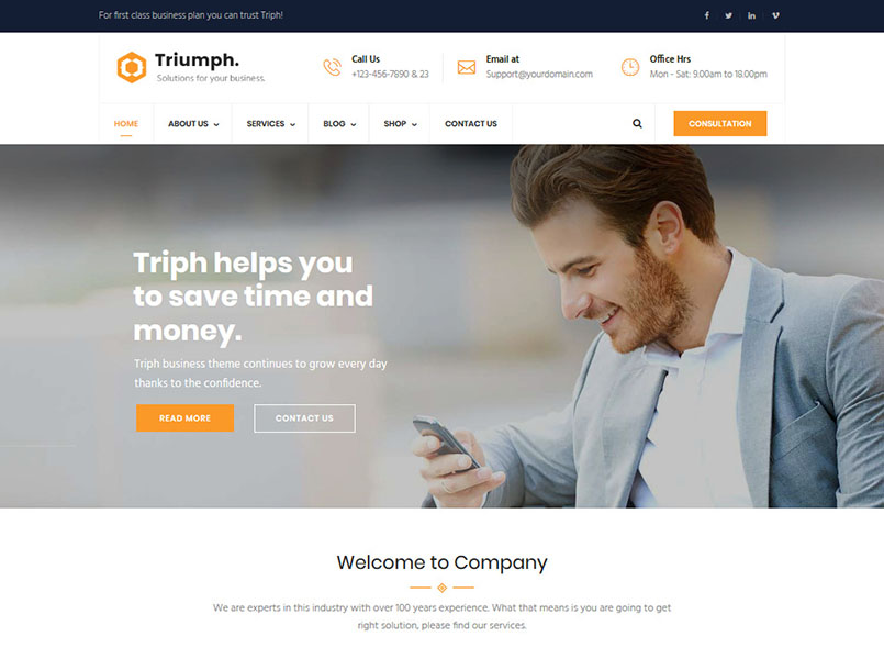 Triumph - Business Consulting  Best Drupal 8.7 Theme