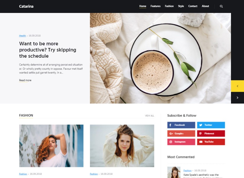 Catarina - Latest Wordpress Blog Theme