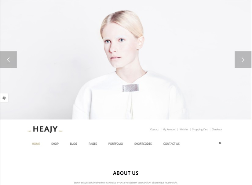 Heajy - latest fashion website template