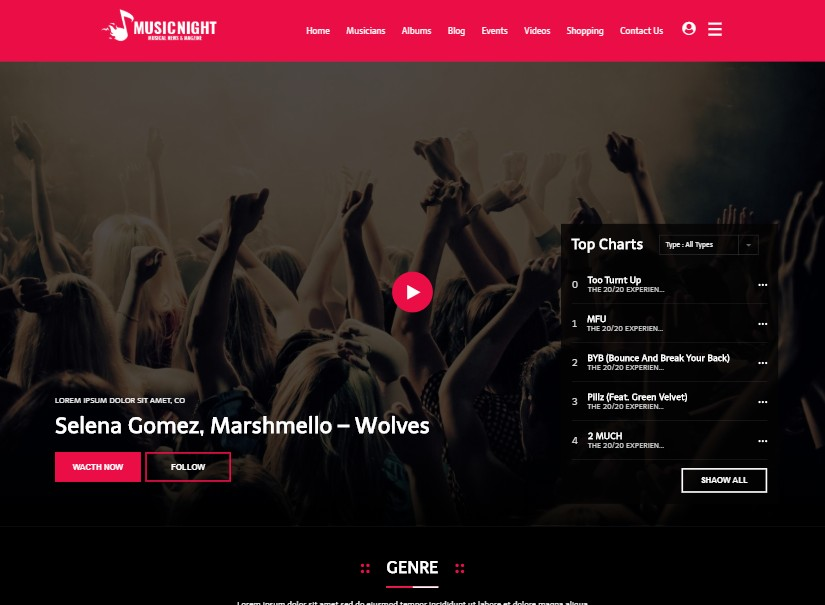 MusicNight - entertainment website design