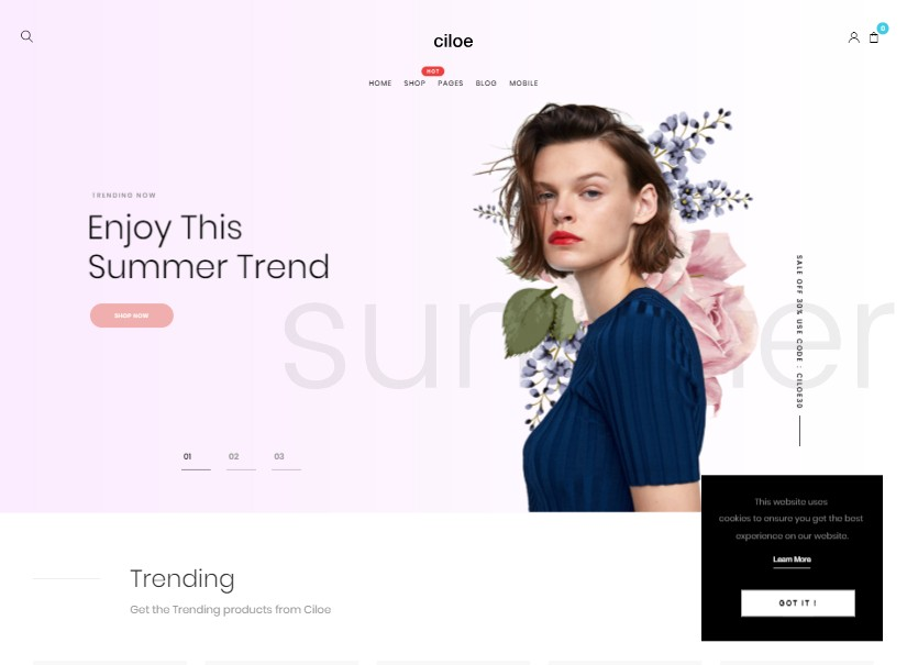 Ciloe - top ecommerce templates