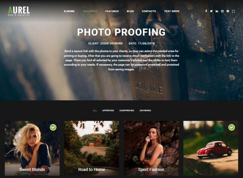 Aurel - best photography website templates