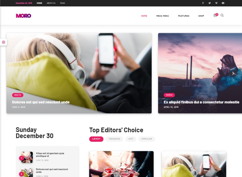 Moro - top wordpress blog theme