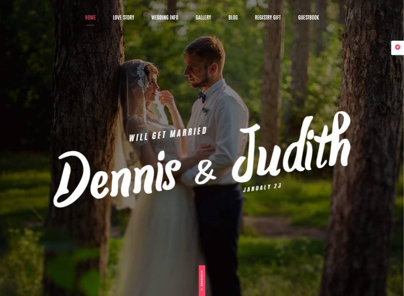 Weds - best wedding website templates