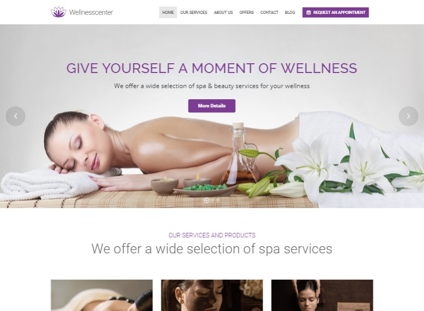 WellnessCenter - best beauty website design
