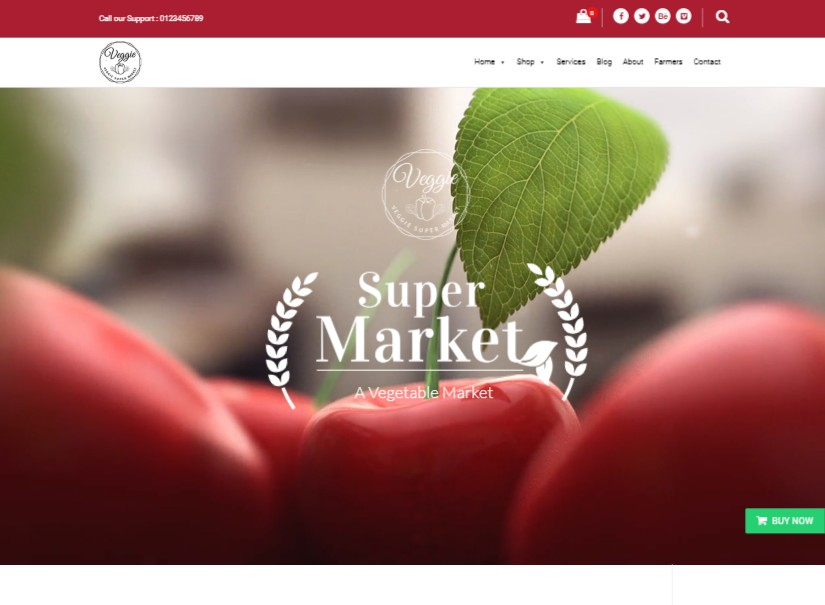 Veggie - best agriculture website template